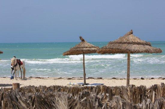 Al Jazira Beach & Spa : A 10 pas de la piscine, accès à la plage