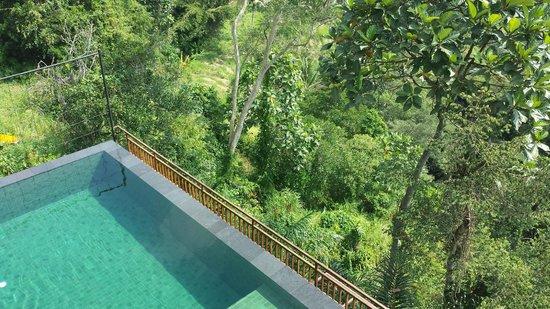Komaneka at Tanggayuda : Private pool