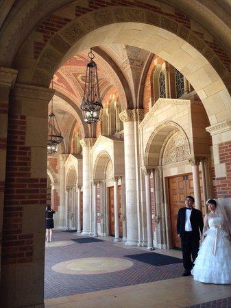 UCLA Store: 結婚の写真撮影してました!(笑)