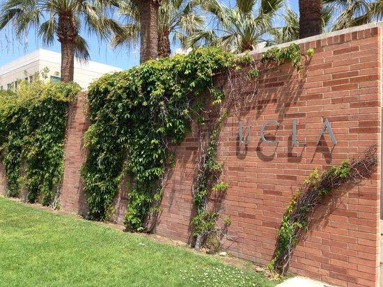 UCLA Store: 入り口!