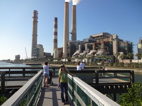 Manatee Park : Power plant that warms the water
