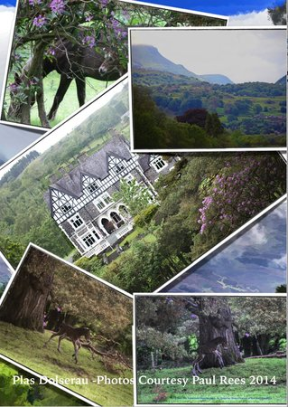 Dolserau Hall Hotel : Collage of Scenic Views from The Hotel Dolserau- courtesy of Paul Rees