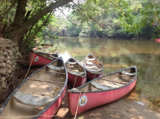The Lodge at Chaa Creek : the river
