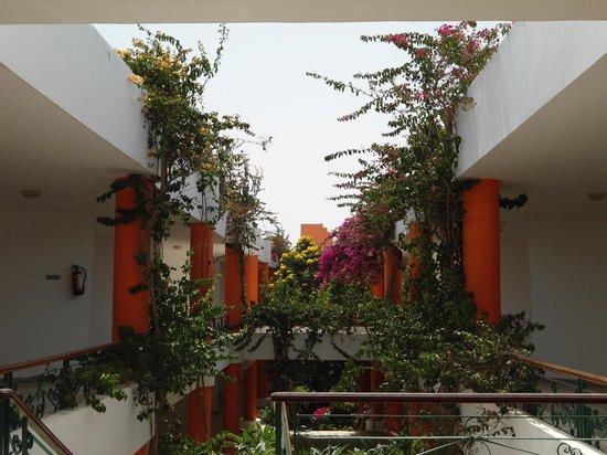 Fantazia Resort : Giardino interno