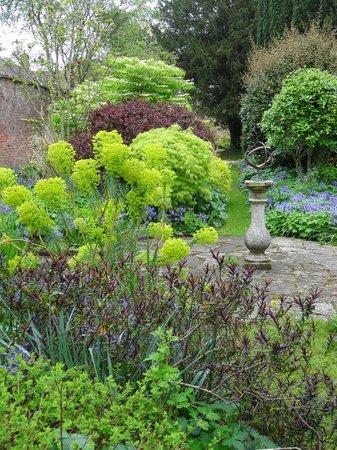 The Eastbury Hotel : Garden at Eastbury