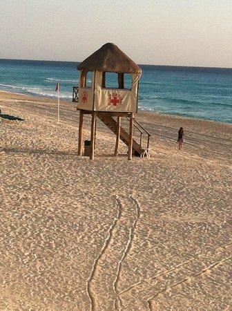 JW Marriott Cancun Resort & Spa: Life guard