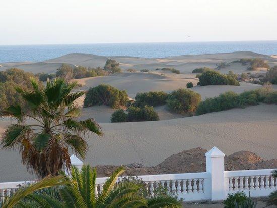 Hotel Riu Palace Maspalomas: vue sur les dunes à l'arrière de l'hôtel