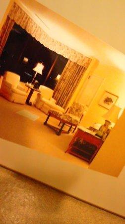 Hotel Chinzanso Tokyo : 部屋