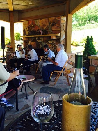 Linville Falls Winery: Bluegrass while we taste!
