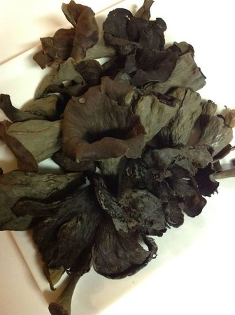 Tavern 27: Black Trumpet Mushrooms