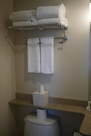 Hotel Veritas: nice clean bathroom