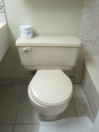 Lethbridge Lodge Hotel & Conference Centre: wasteful toilet tanks everywhere