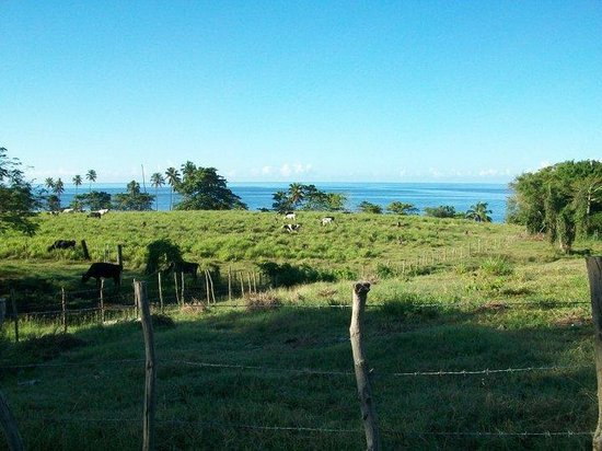 Tres Palmas Marine Reserve: View from Hwy. 413 is 2nd to none!
