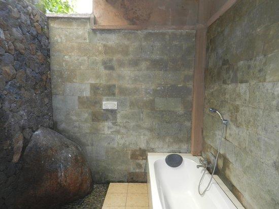 Anugerah Villas: open washroom