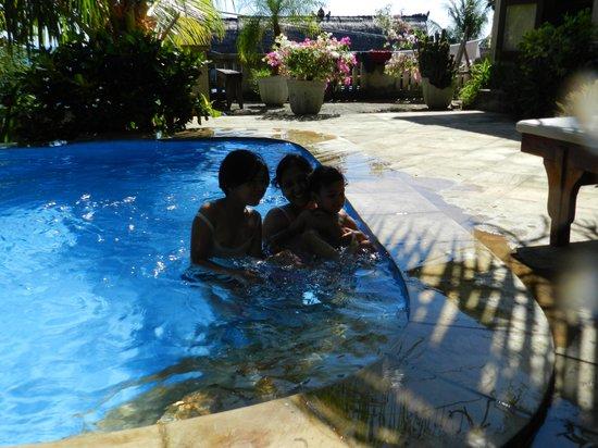 Anugerah Villas: The pool is so refreshing