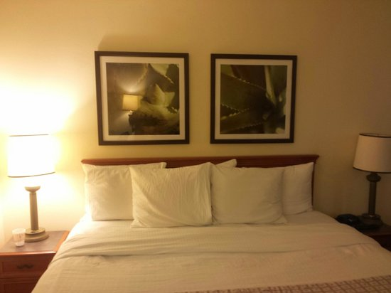 La Quinta Inn & Suites Sunrise Sawgrass Mills: quarto