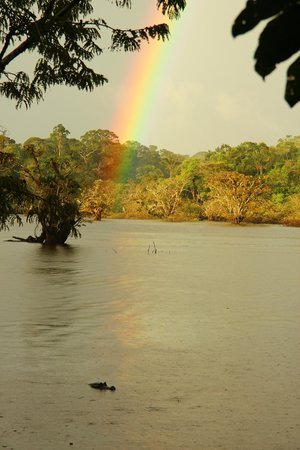 Siona Lodge: Rainbows and Caimans