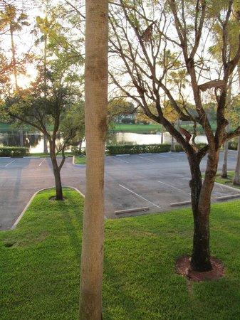 La Quinta Inn & Suites Sunrise Sawgrass Mills: vista do quarto