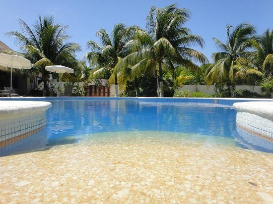 Wish Tulum: JUMP IN OUR POOL