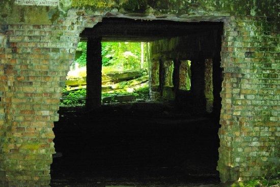 Wolf's lair - Wolfsschanze : Bunker