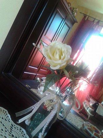 Agriturismo Due Ponti: una rosa bianca
