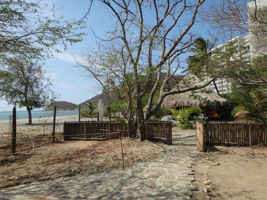 Playa del Ritmo, Beach Hostel & Bar: Patio, playa