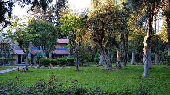 Golden Tulip Farah Marrakech: Hotelpark