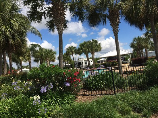 Lake View RV Resort: Nice landscaping around pool area
