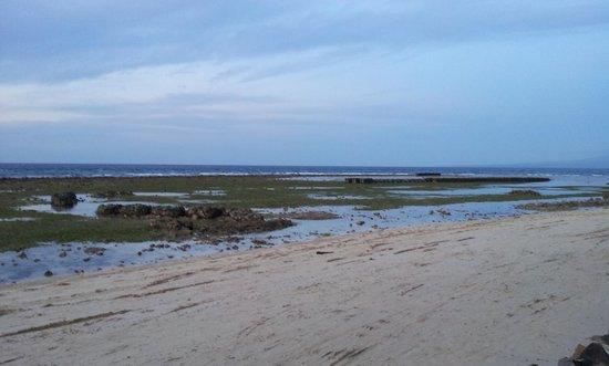 Villa Grasia Resort & Spa : La bassa marea