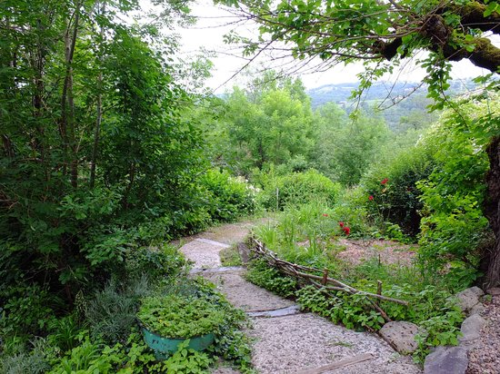 Le Murier de Viels: Une allée du jardin !