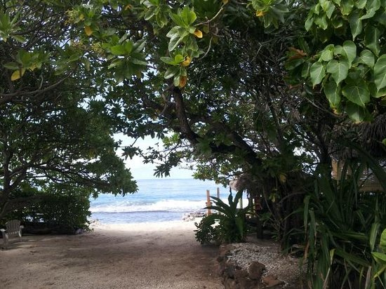 Green Lodge : La playa se ve desde el bungalow