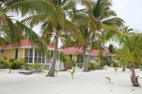 Turneffe Island Resort : Beautiful, peaceful grounds with 1 minute walk to everything