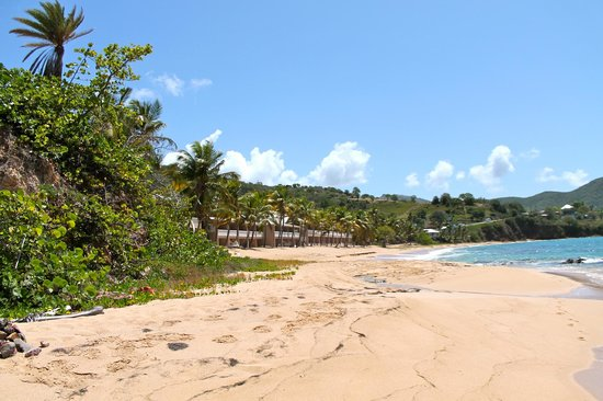Curtain Bluff Resort: Beach