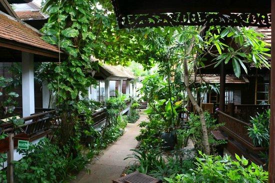 Samui Paradise Chaweng Beach Resort : Samui Paradise