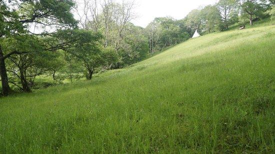 Eco Retreats: The Steep Hill