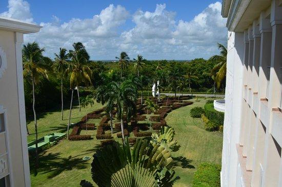 Hotel Riu Palace Punta Cana: jardin interior