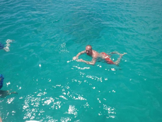 Calabaza Sailing Cruises: Relaxing swim after lunch