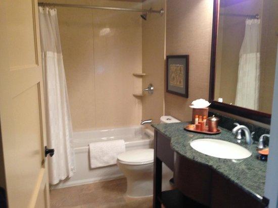 Blue Dolphin Inn : Bathroom