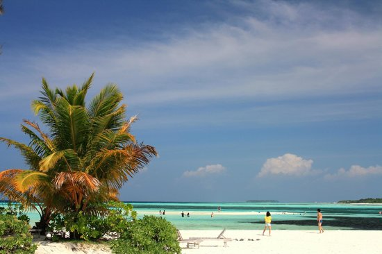 Fun Island Resort: White beach