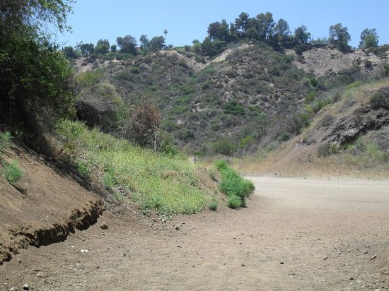 Road from the BATCAVE in Griffith Park