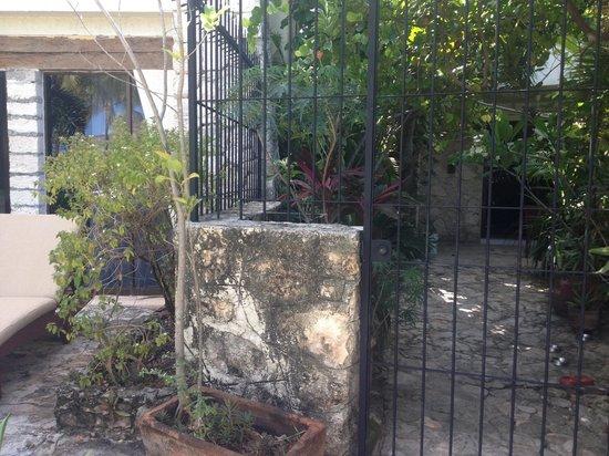 Na Balam Beach Hotel: Ma chambre et à côté les gamelles des chats ...