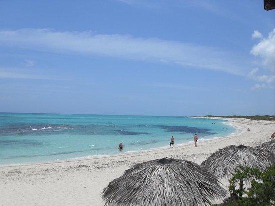 Melia Buenavista : Vista desde el Bar junto a la Playa