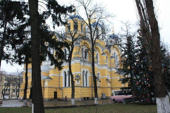 St. Volodymyr's Cathedral: Вид из-за деревьев с улицы