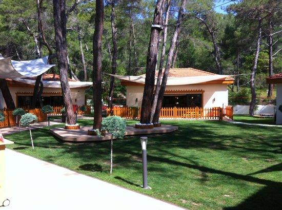 Club Med Palmiye: Petit Club