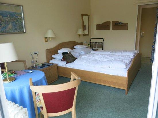 Baudobriga Rheinhotel: Chambre 2002