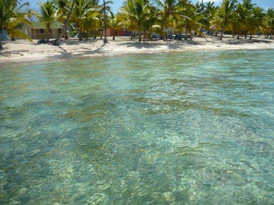 Bayahibe Fishing Centre: Llegando a la Isla
