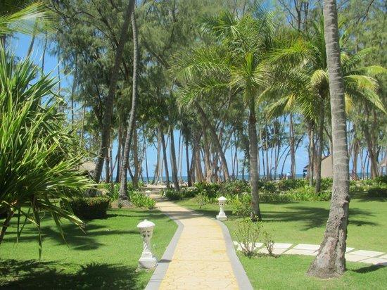 Vista Sol Punta Cana: Jardines camino a la playa