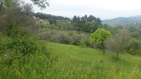 Casale Fontibucci: The surrounding area