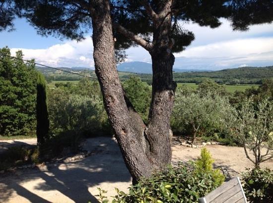 La Fontaine au Loup : mont Ventoux
