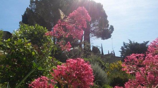 Casale Fontibucci: Gardens